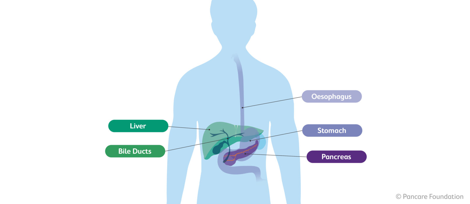 What is upper gastrointestinal cancer?